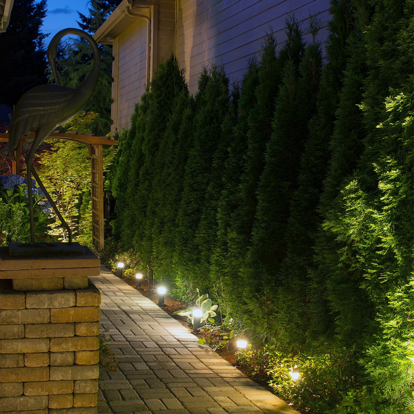 backyard-lighting-web-sq